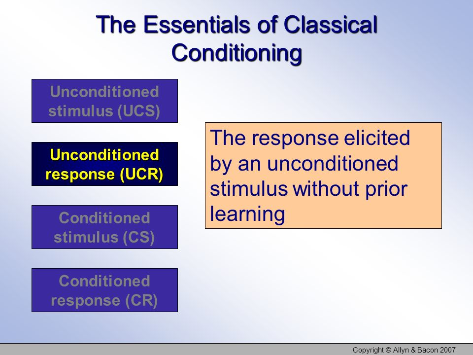 The Essentials of Classical Conditioning