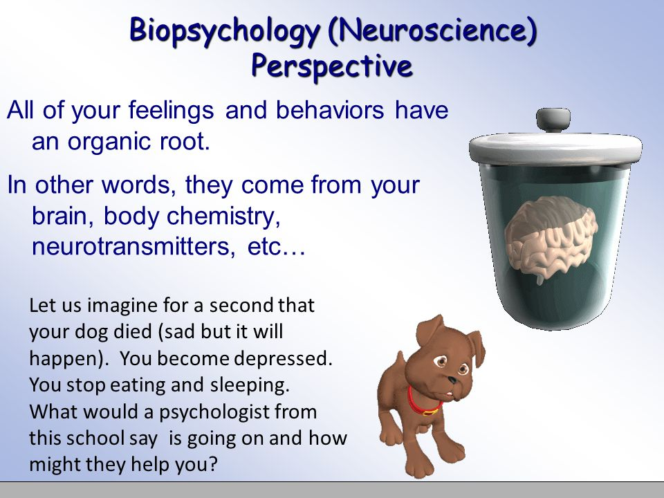 Biopsychology (Neuroscience) Perspective