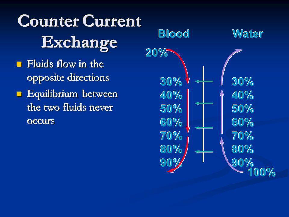 Counter Current Exchange