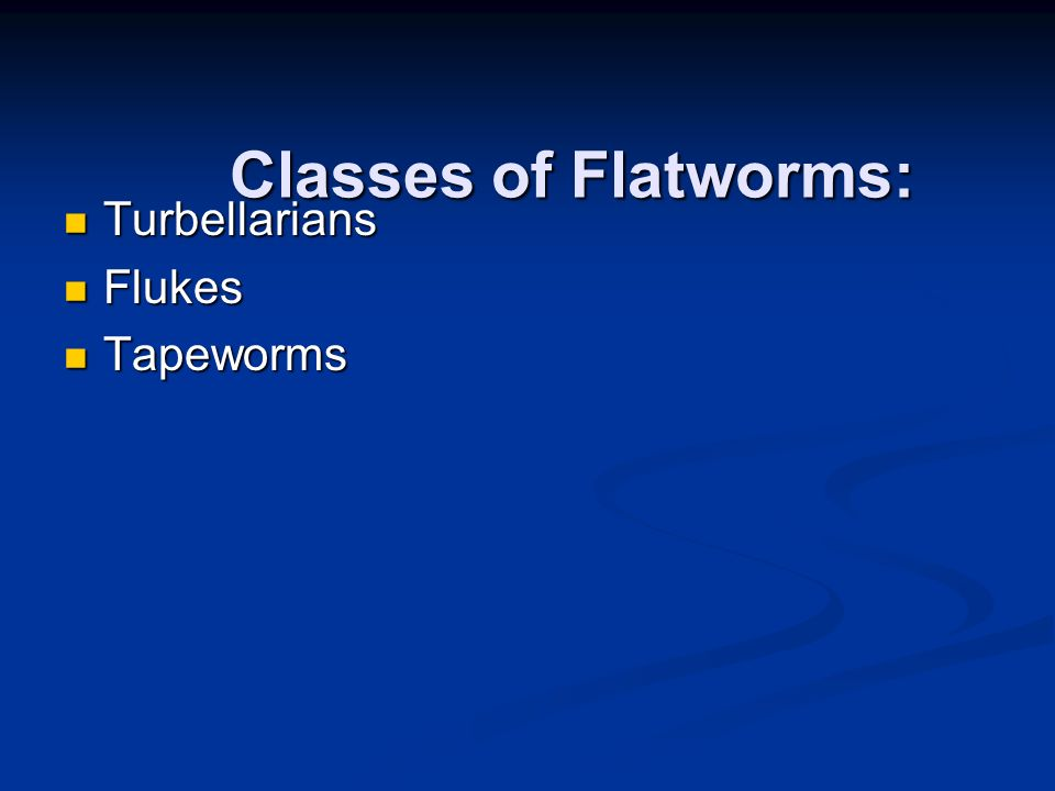 Turbellarians Flukes Tapeworms Classes of Flatworms: