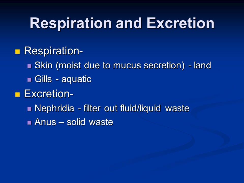 Respiration and Excretion