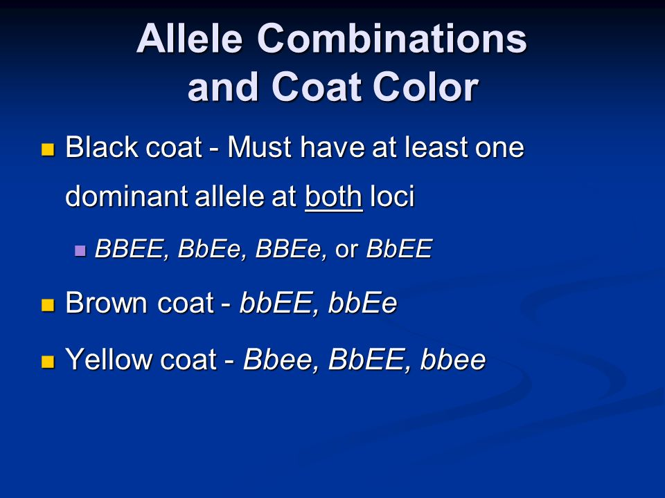 Allele Combinations and Coat Color