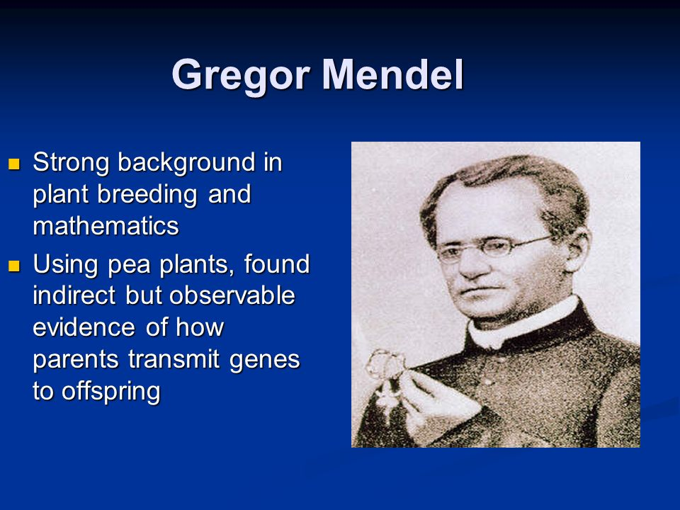 Gregor Mendel Strong background in plant breeding and mathematics
