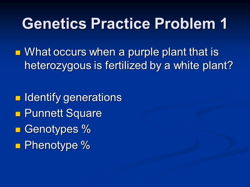 Genetics Practice Problem 1