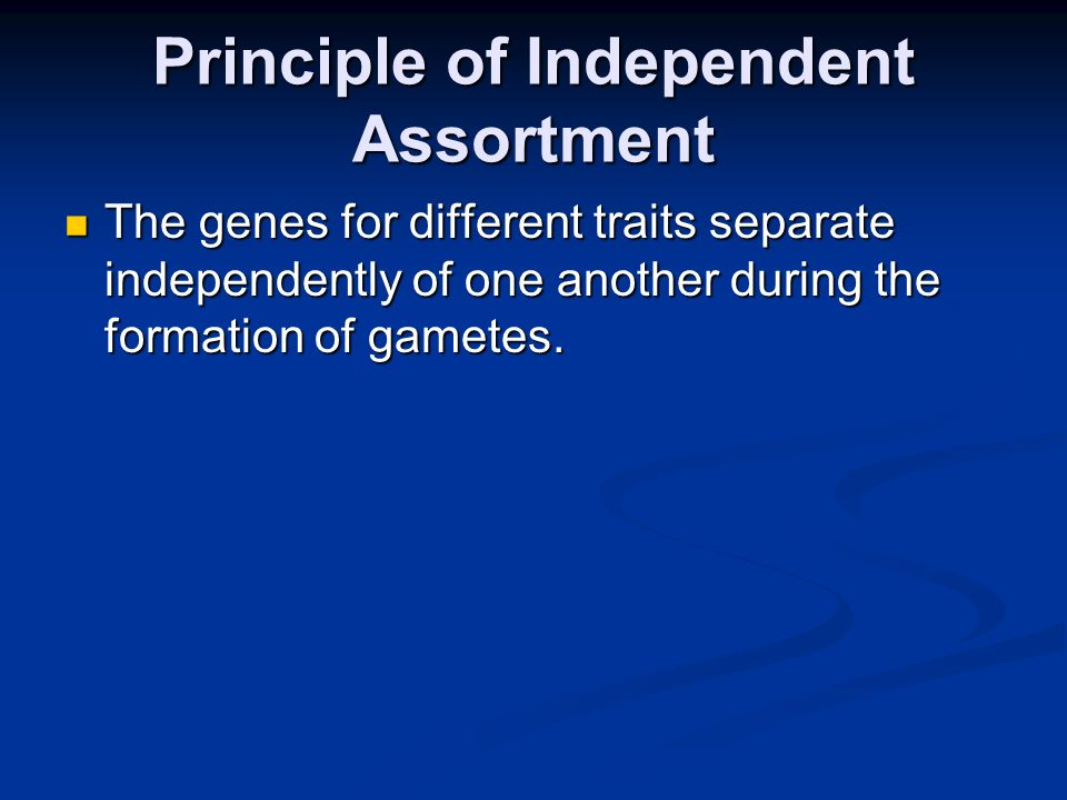 Principle of Independent Assortment