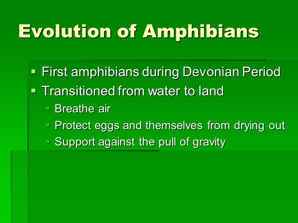 Evolution of Amphibians