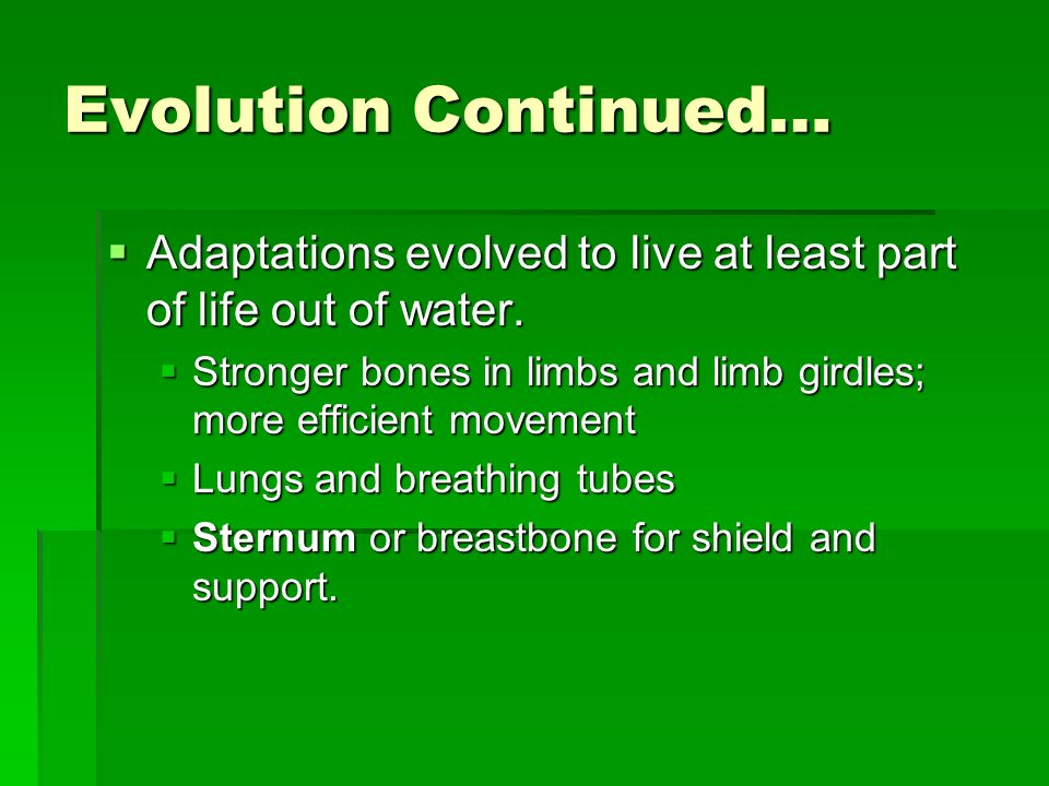 Evolution Continued… Adaptations evolved to live at least part of life out of water.