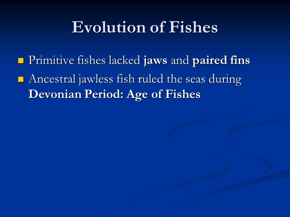 Evolution of Fishes Primitive fishes lacked jaws and paired fins