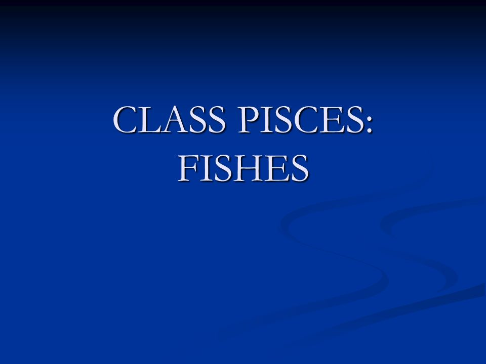 CLASS PISCES: FISHES