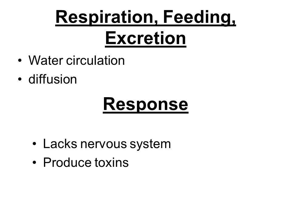 Respiration, Feeding, Excretion