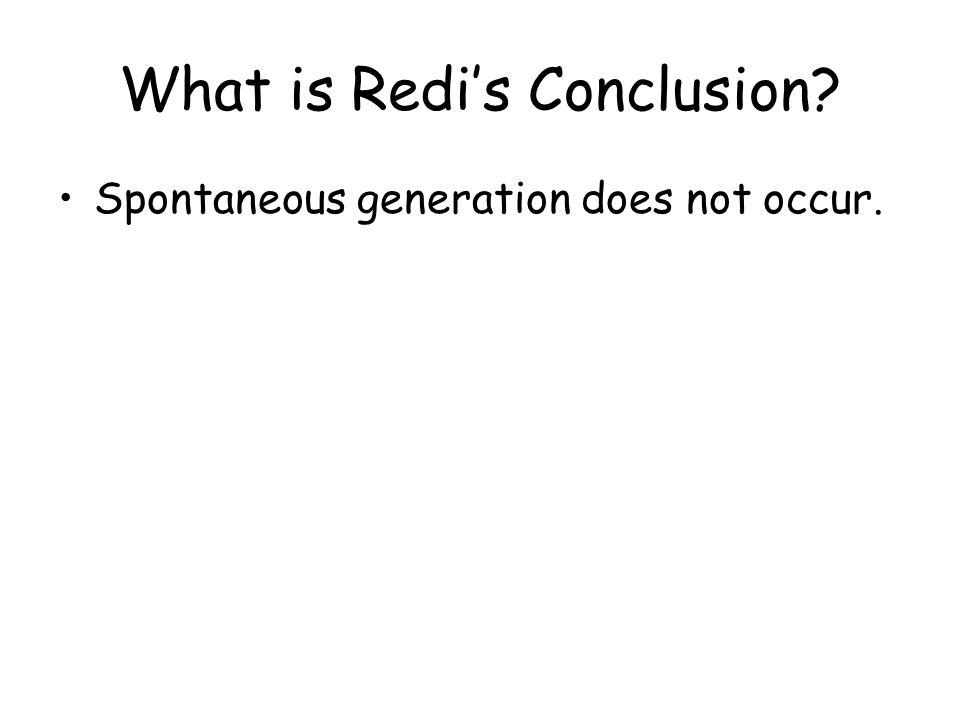 What is Redi's Conclusion