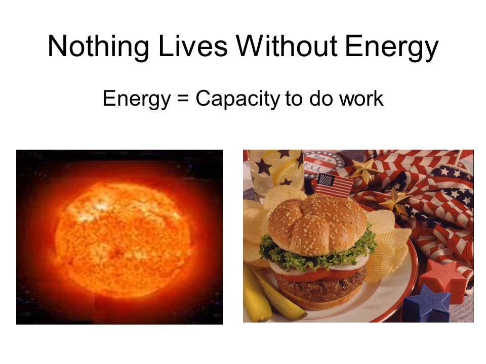 Nothing Lives Without Energy