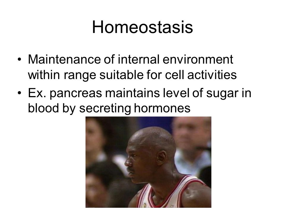 Homeostasis Maintenance of internal environment within range suitable for cell activities.