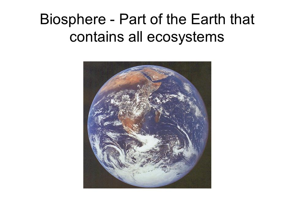 Biosphere - Part of the Earth that contains all ecosystems