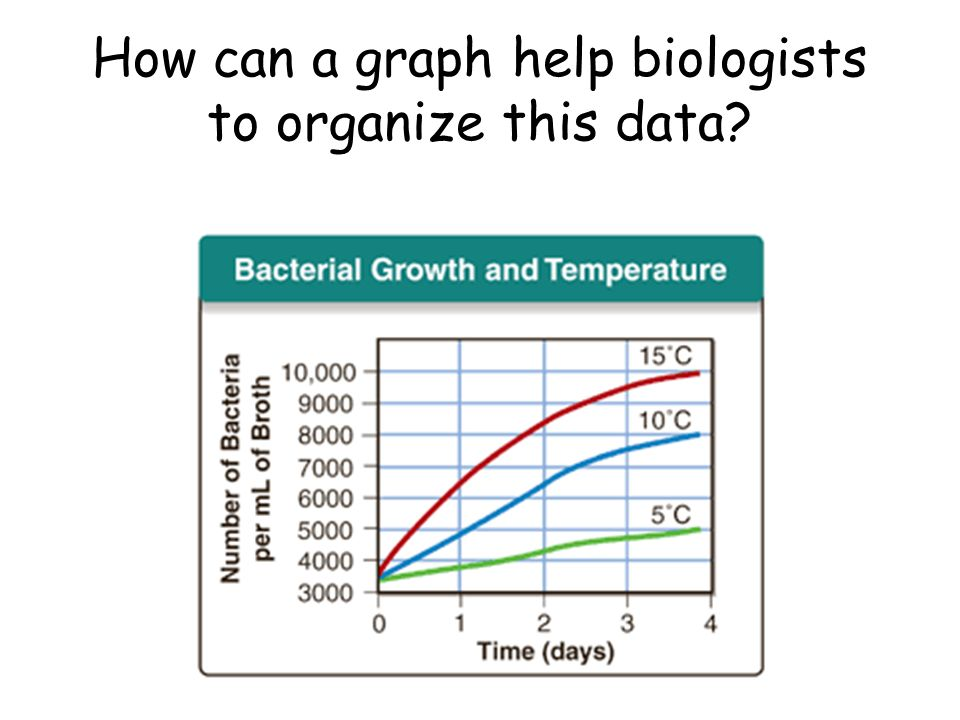 How can a graph help biologists to organize this data