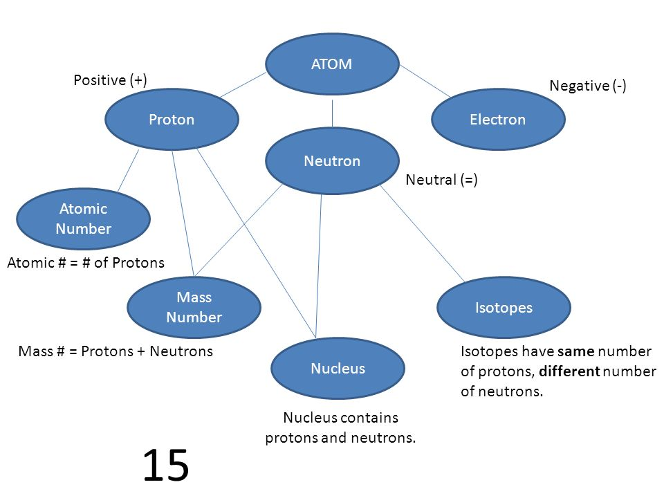 Nucleus contains protons and neutrons.
