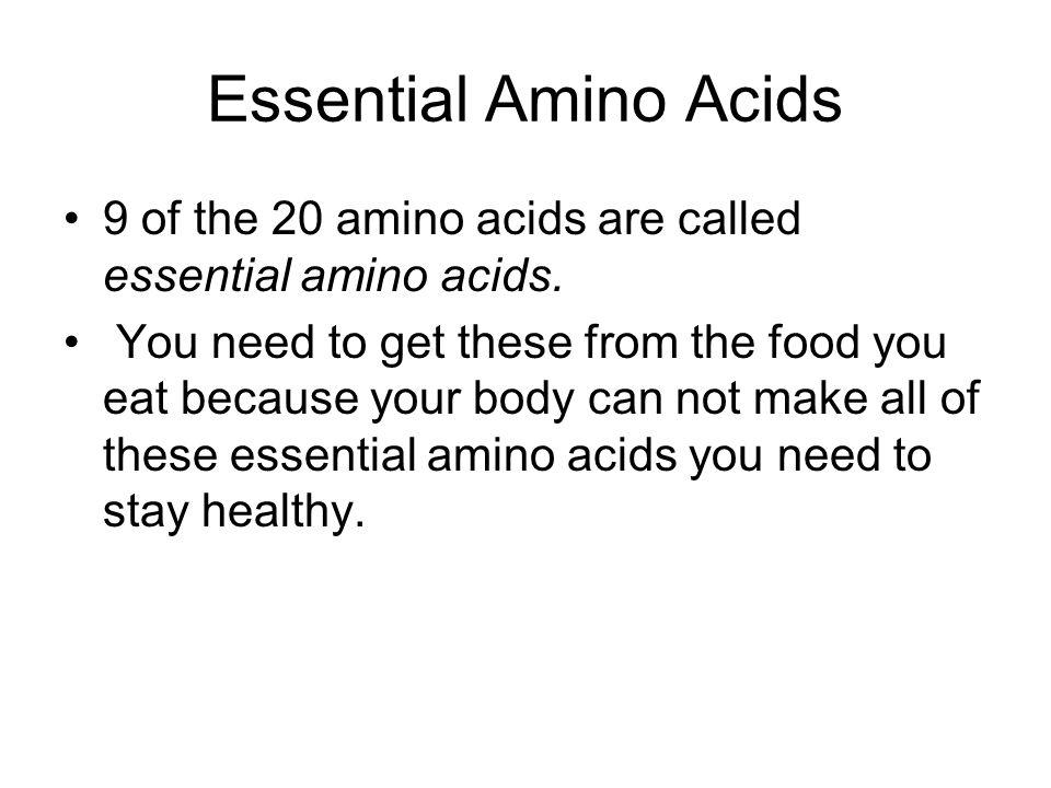 essential and nonessential amino acids pdf