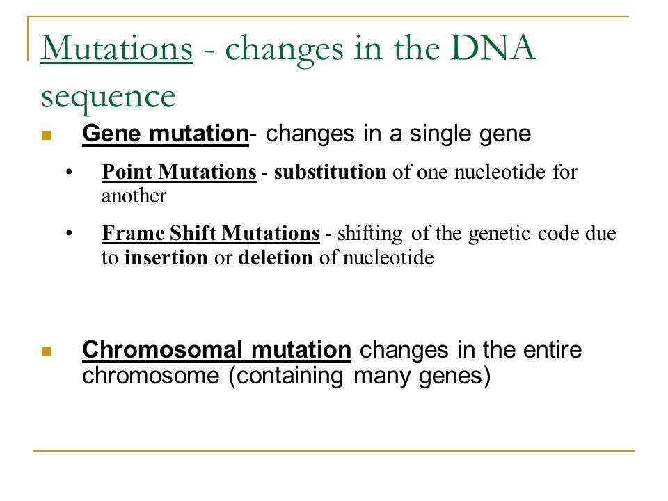 Genetics worksheets elementary