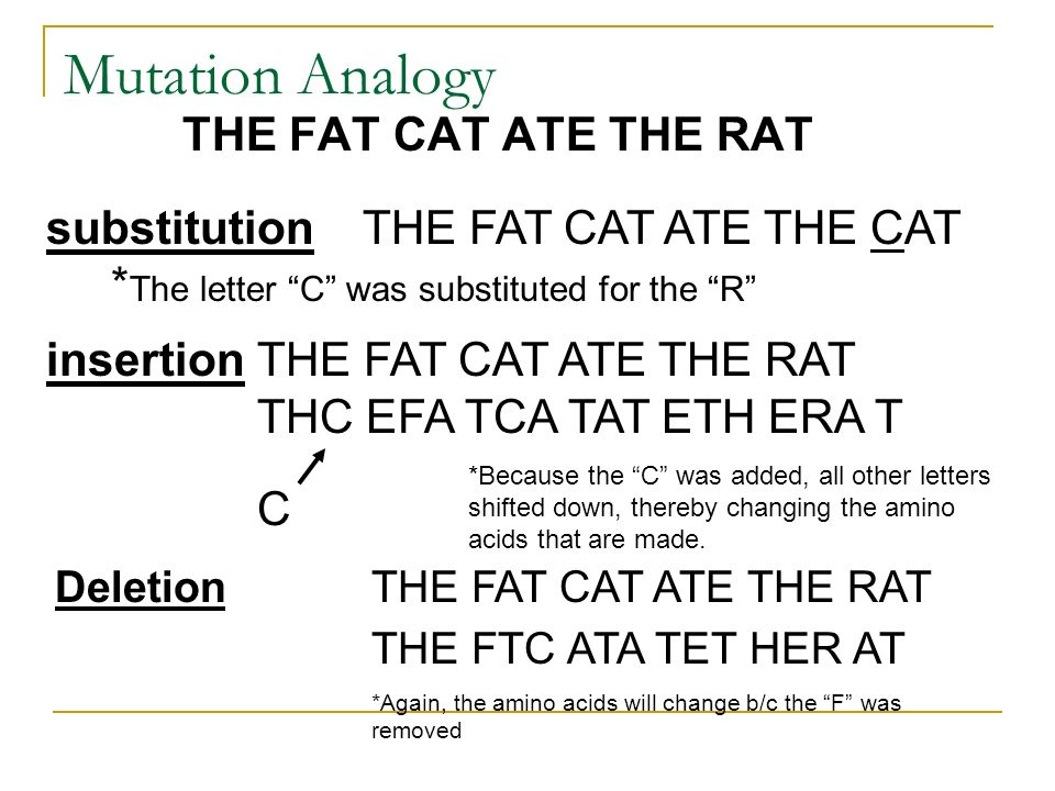 Mutation Analogy THE FAT CAT ATE THE RAT