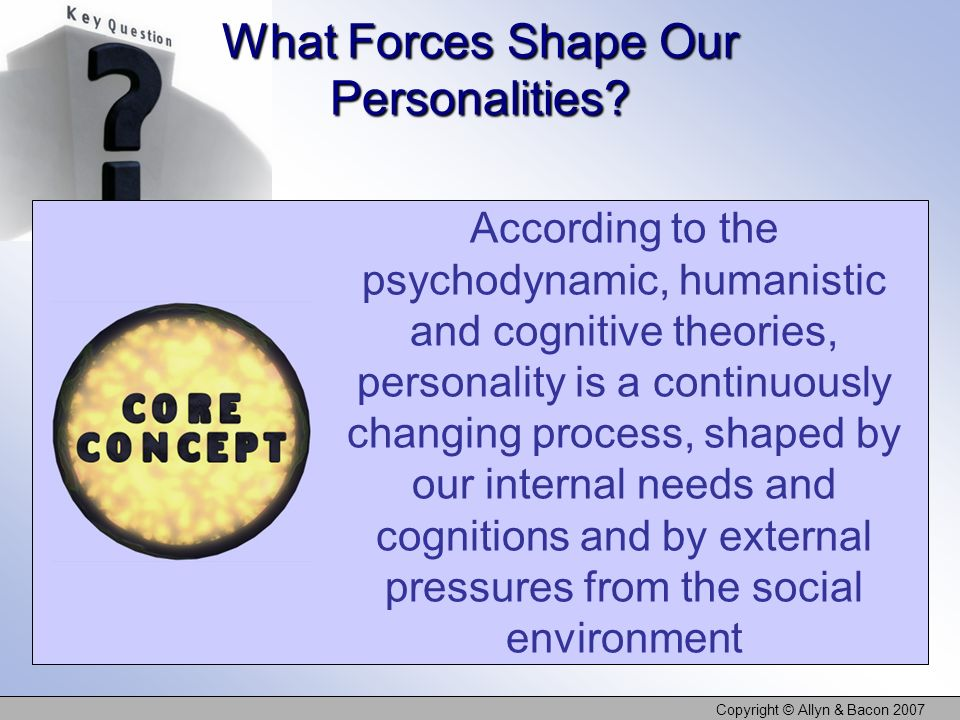 What Forces Shape Our Personalities