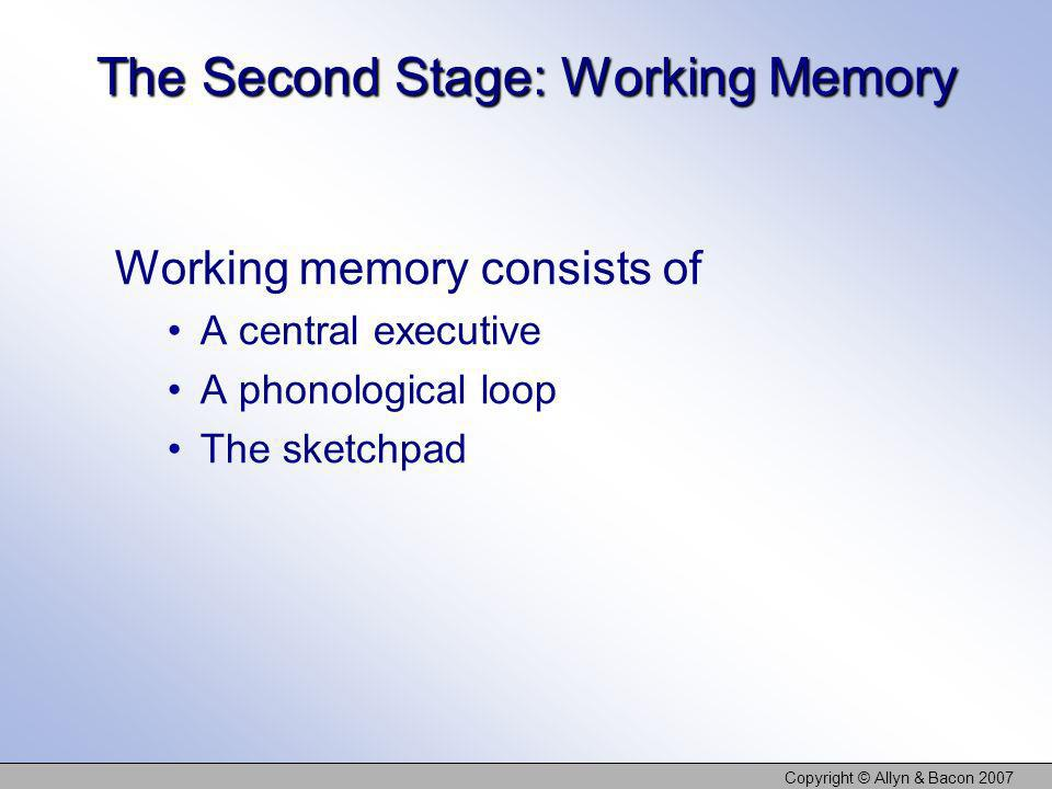 The Second Stage: Working Memory