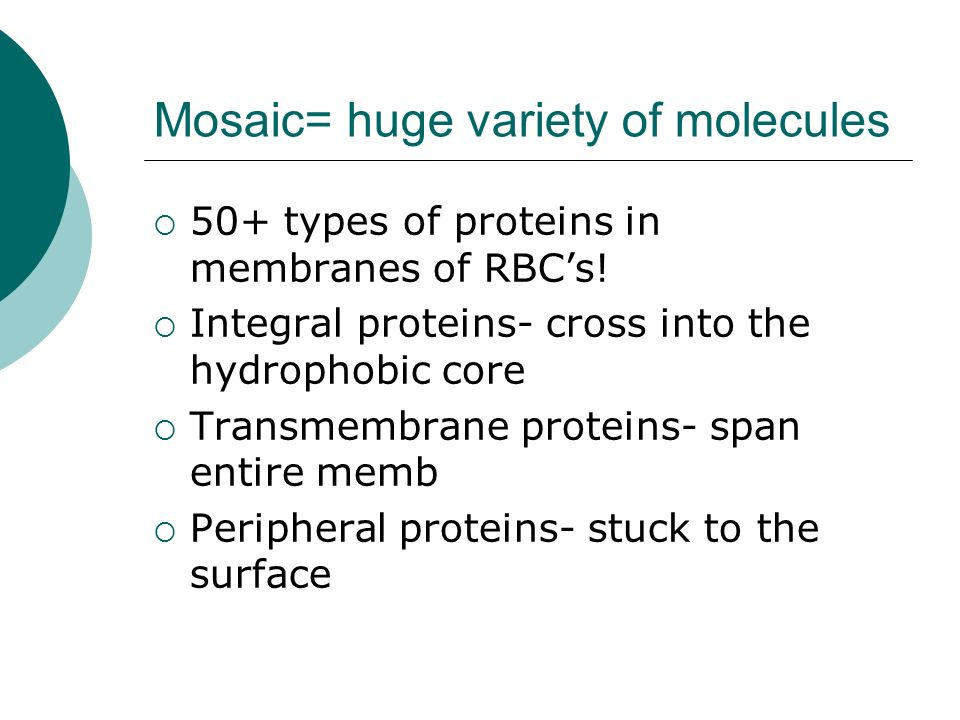 Mosaic= huge variety of molecules