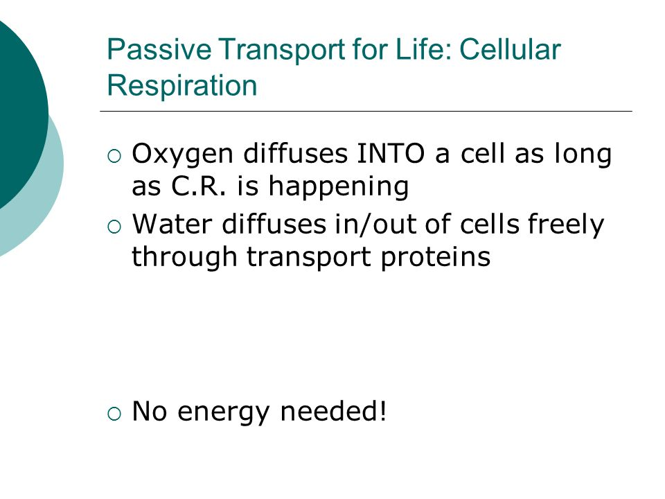 Passive Transport for Life: Cellular Respiration