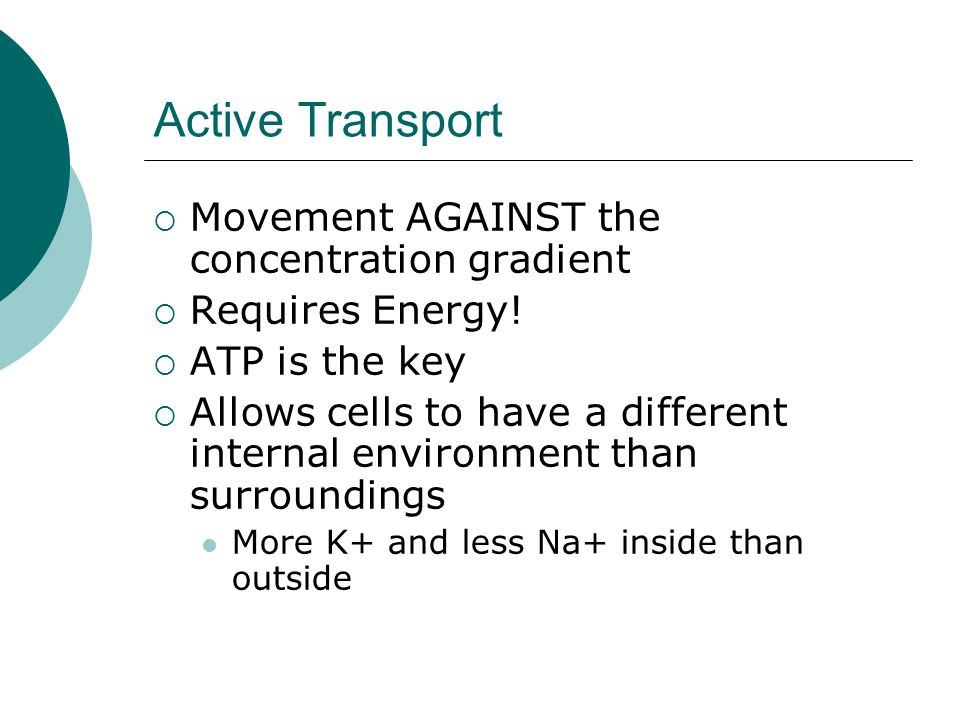 Active Transport Movement AGAINST the concentration gradient