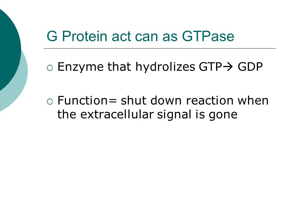 G Protein act can as GTPase