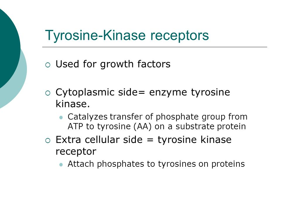 Tyrosine-Kinase receptors