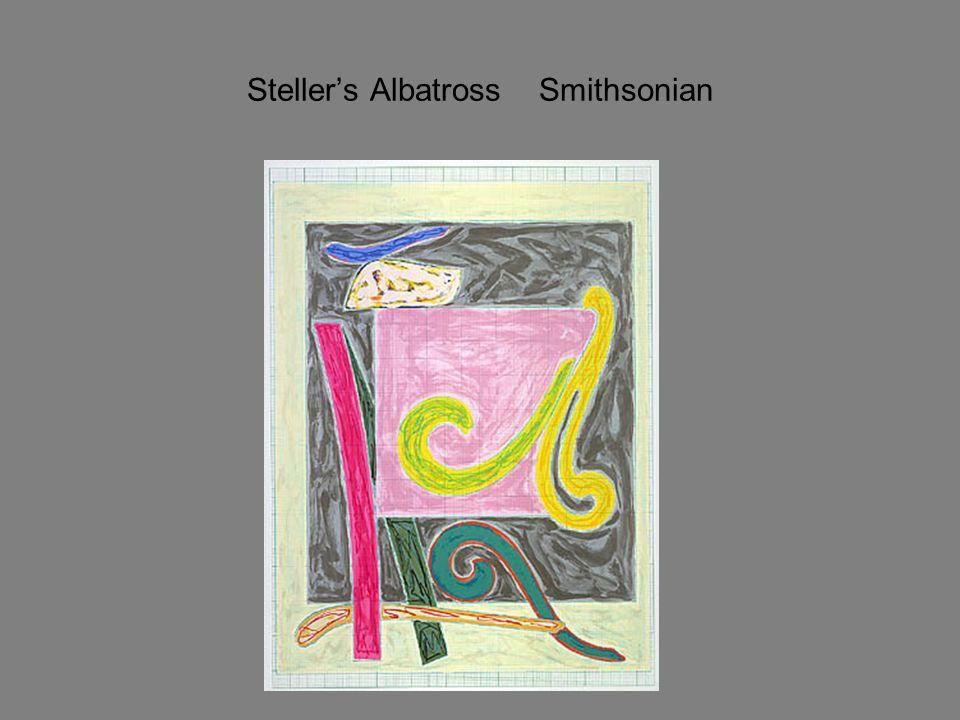 Steller's Albatross Smithsonian