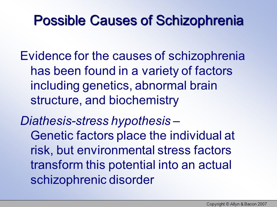 Possible Causes of Schizophrenia