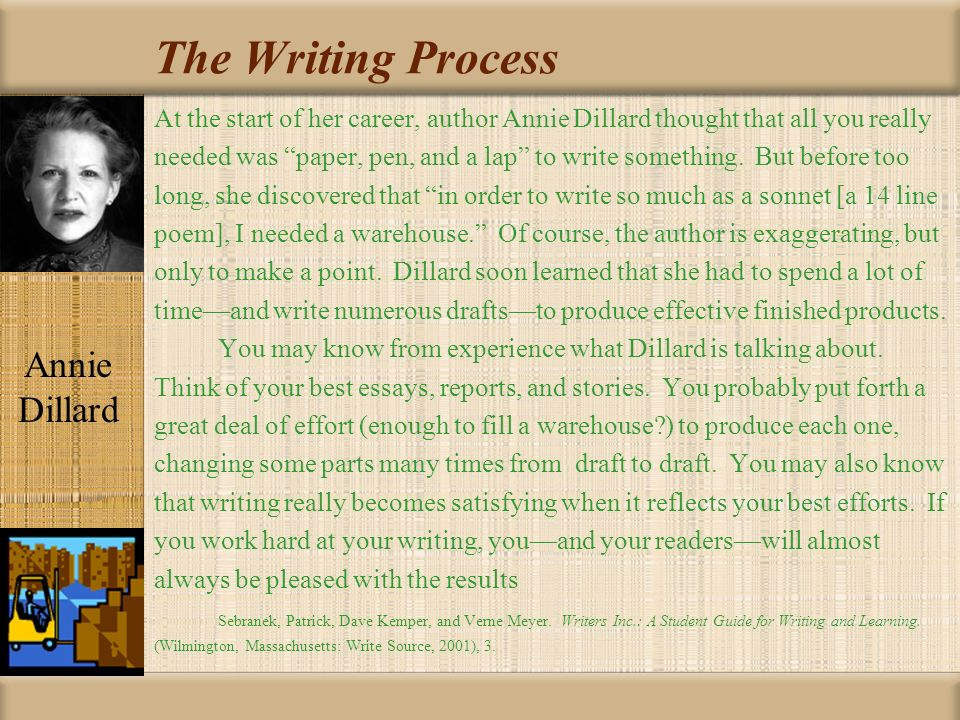 The Chase by Annie Dillard Essay Sample