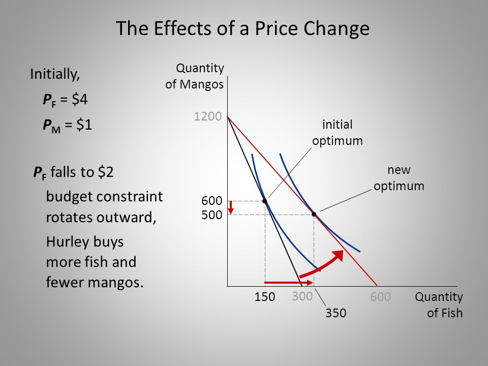 The Effects of a Price Change