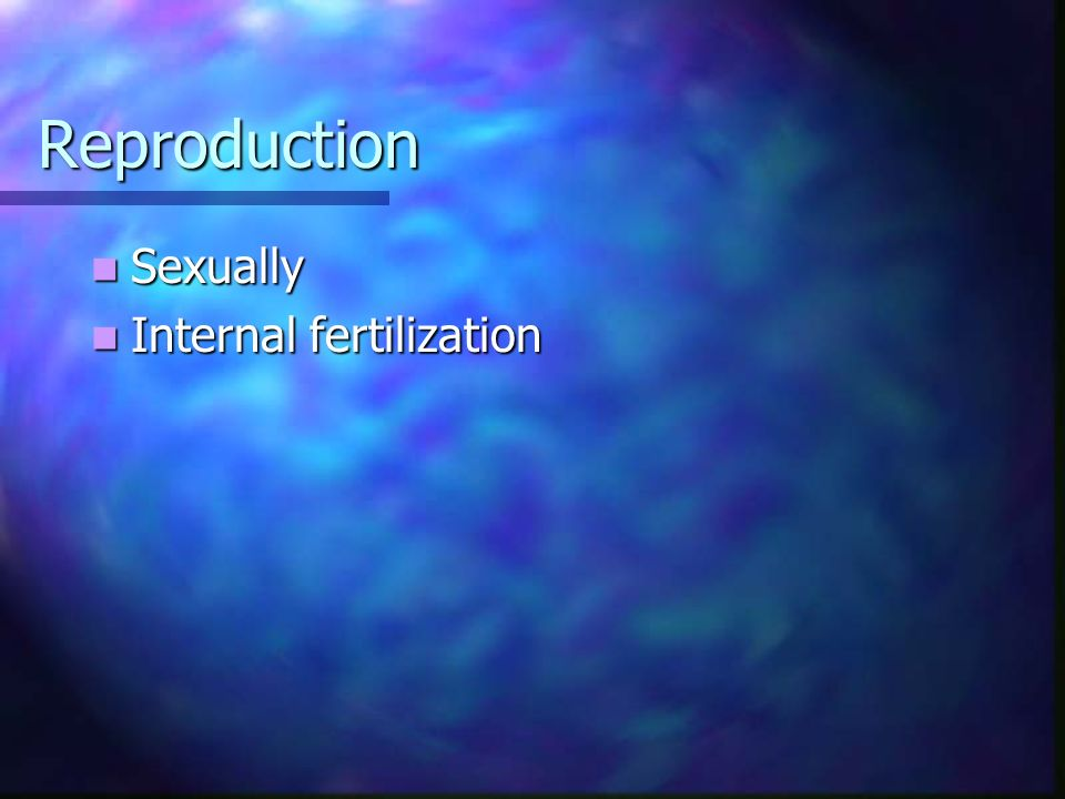 Reproduction Sexually Internal fertilization