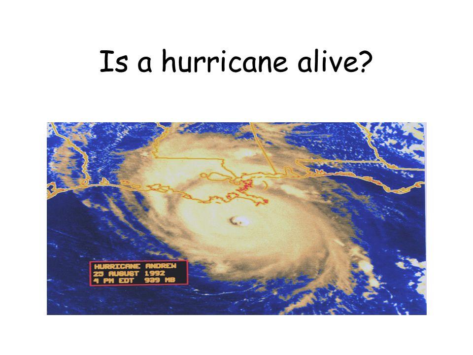 Is a hurricane alive