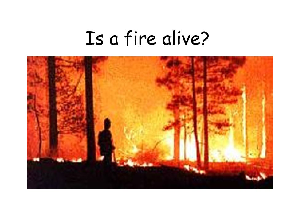 Is a fire alive
