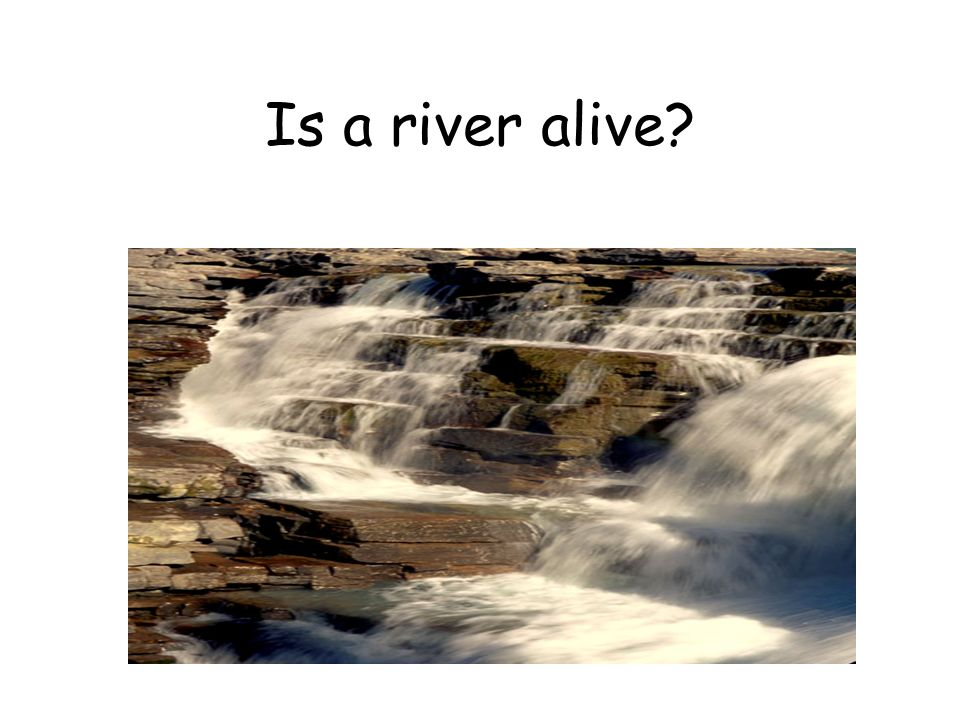 Is a river alive