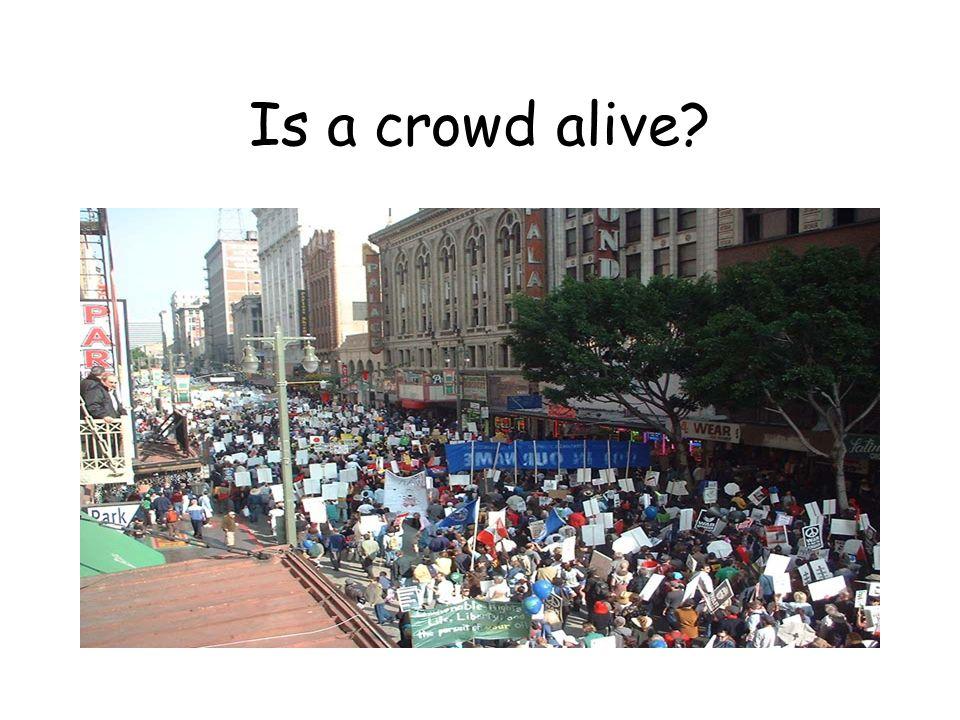 Is a crowd alive