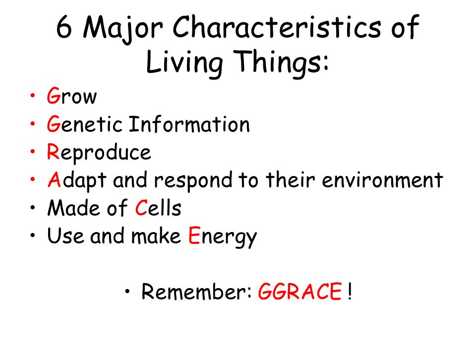 6 Major Characteristics of Living Things: