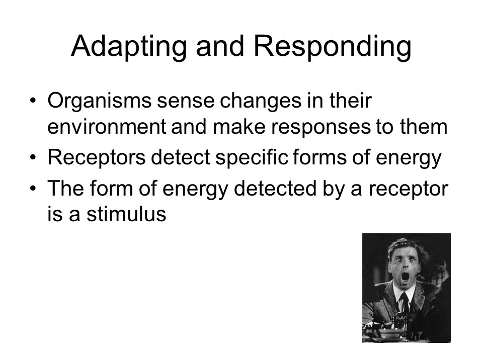 Adapting and Responding