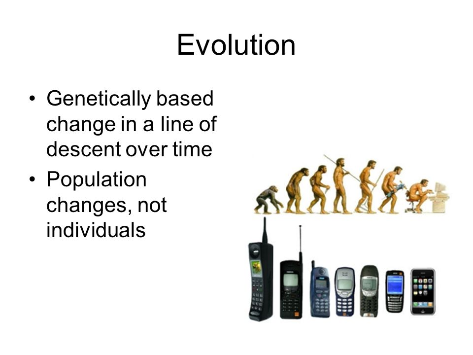 Evolution Genetically based change in a line of descent over time