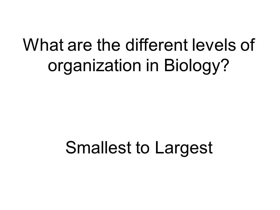 What are the different levels of organization in Biology