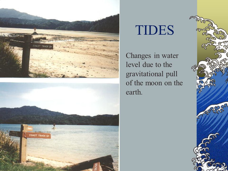 TIDES Changes in water level due to the gravitational pull of the moon on the earth.