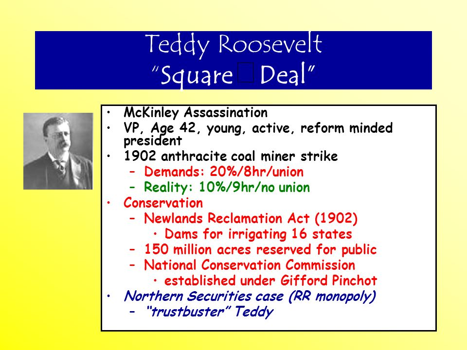 Teddy Roosevelt Square Deal