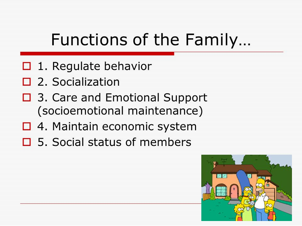 Functions of the Family…