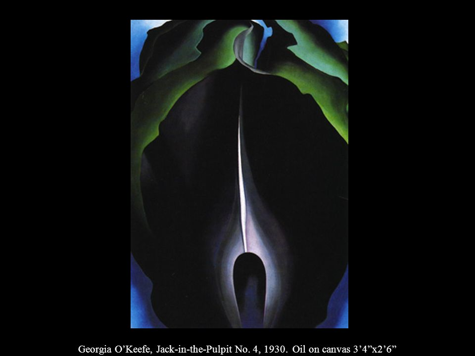 Georgia O'Keefe, Jack-in-the-Pulpit No. 4, 1930