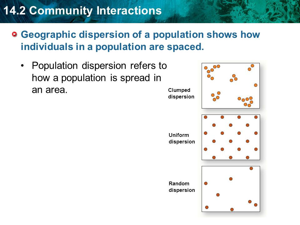 Population dispersion refers to how a population is spread in an area.