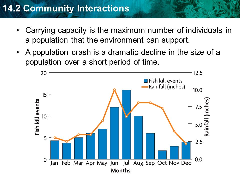 Carrying capacity is the maximum number of individuals in a population that the environment can support.