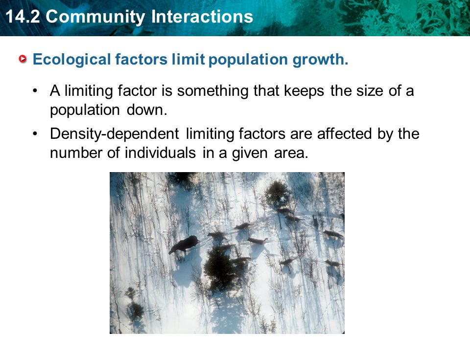 Ecological factors limit population growth.